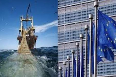 المفوضية الأوربية تستدعي جمعية موالية للبوليساريو لمشاورات تجديد اتفاق الصيد البحري