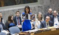 هيلي بمجلس الأمن: العرب والمسلمون يدعمون فلسطين بالكلام فقط