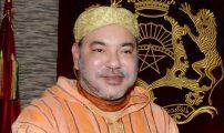 ديماريف.كوم  .تهنئة الى المقام العالي بالله الملك محمد السادس نصره الله بمناسبة عيد الاضحى المبارك