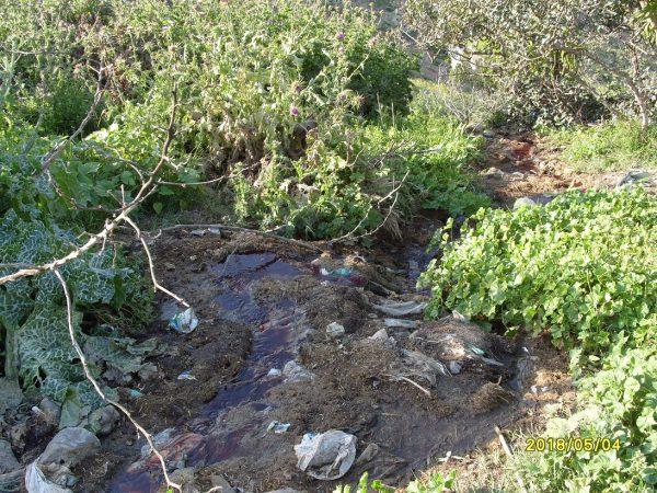 تلويث البيئة ببني شيكر ضواحي الناظور (13)