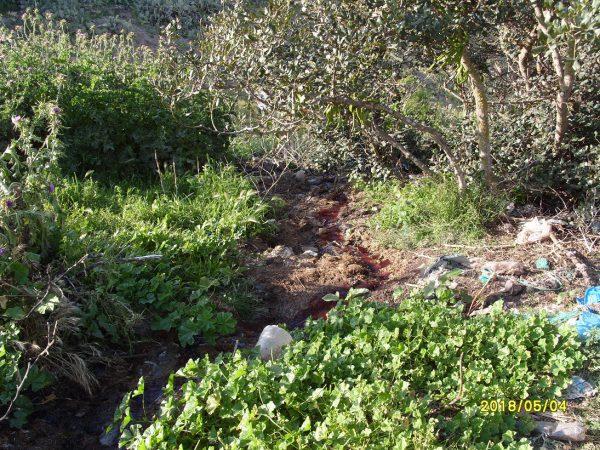 تلويث البيئة ببني شيكر ضواحي الناظور (14)