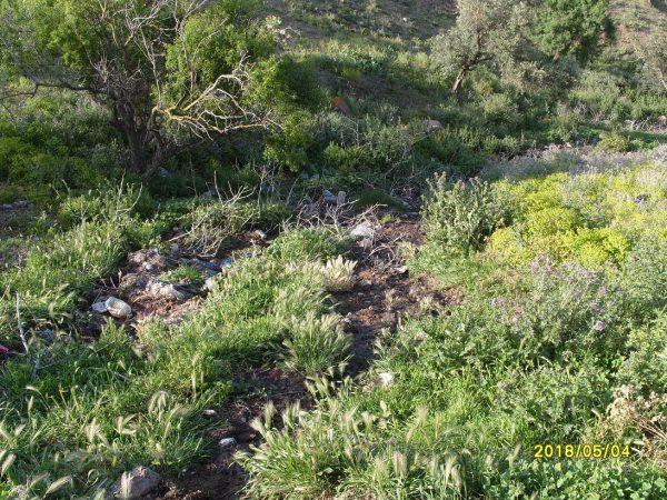 تلويث البيئة ببني شيكر ضواحي الناظور (15)