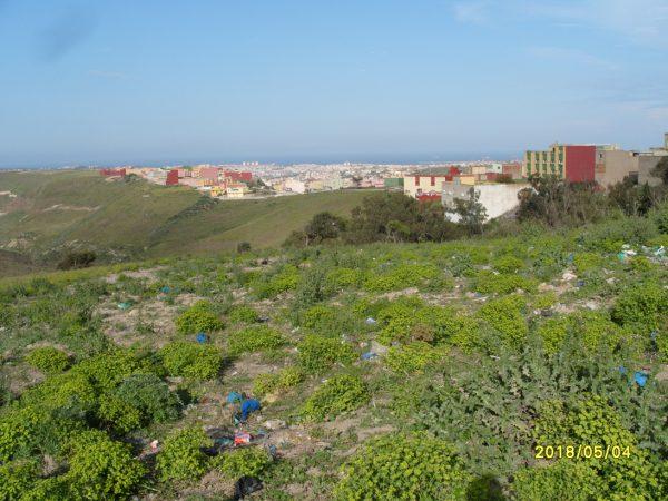 تلويث البيئة ببني شيكر ضواحي الناظور (2)