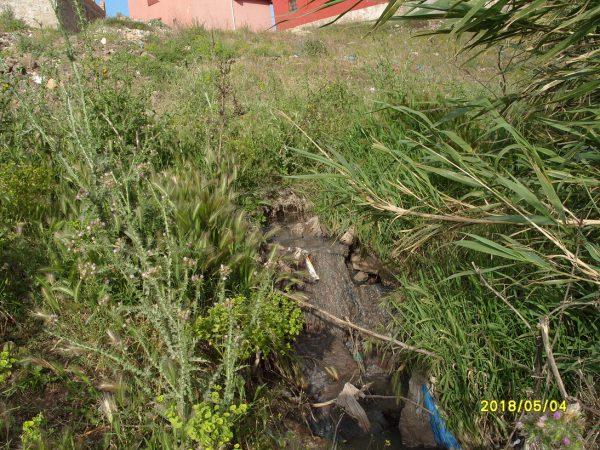 تلويث البيئة ببني شيكر ضواحي الناظور (26)