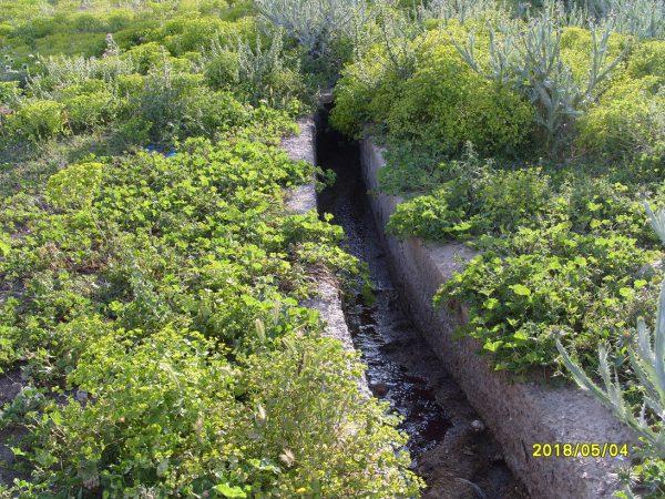 تلويث البيئة ببني شيكر ضواحي الناظور (4)