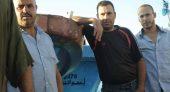 عنجهية السكير مندوب الصيد البحري بالناظور ــ