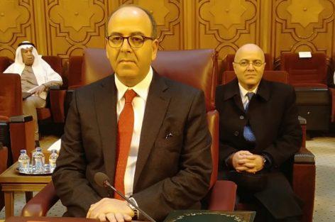بن شماش يدعو من القاهرة إلى فتح الأبواب أمام المشاركة الشعبية لتفادي السقوط في أحضان التطرف والإرهاب