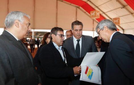 المعرض الدولي للفلاحة بالمغرب 2019 يسلط الضوء على تشغيل الشباب والتنمية القروية…