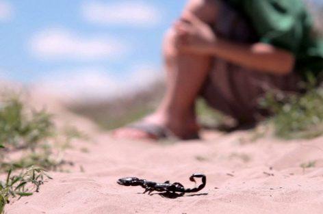 """""""فينك الدكالي"""".. طفل يلفظ أنفاسه بسبب غياب المصل المضاد للسعات العقارب بمستشفى أزيلال"""