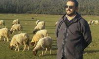 رياض يكتب ….كيفية تحسين سلالة القطيع عند الأغنام