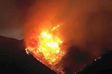 _ 20 الف شجرة من الزيتون احترقت بالكامل بمنطقة إفرني وثفرسيت ضواحي الدريوش