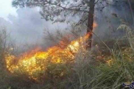 مجلس جماعة تفرسيت كان في المستوى أثناء وبعد حرائق الغابات