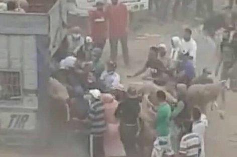 """اعتقال 20 شخصا من مهاجمي """"الكسابة"""" بأحد أسواق الخروف بالدار البيضاء"""